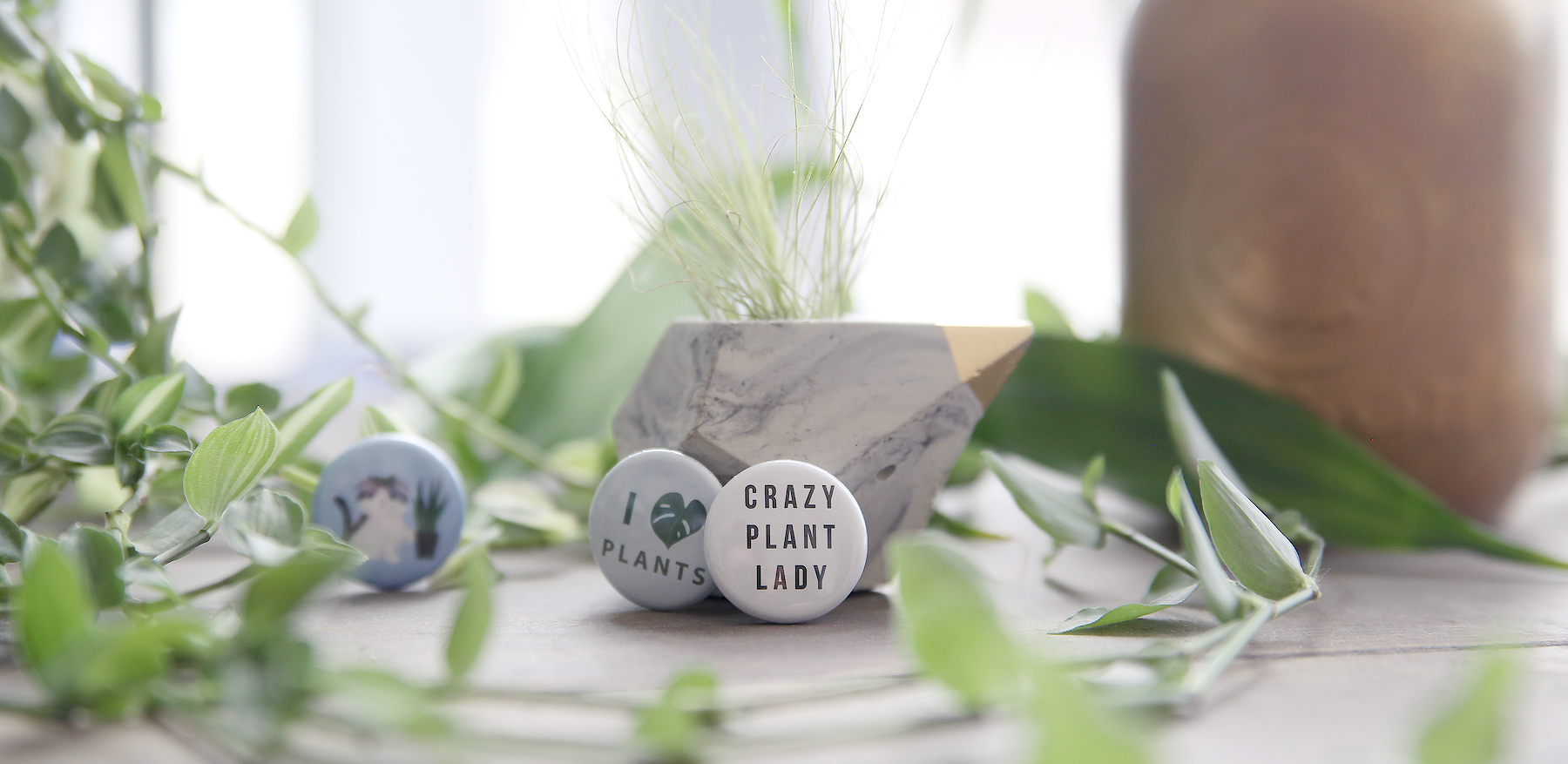 Plant pins by Modern Plant Life