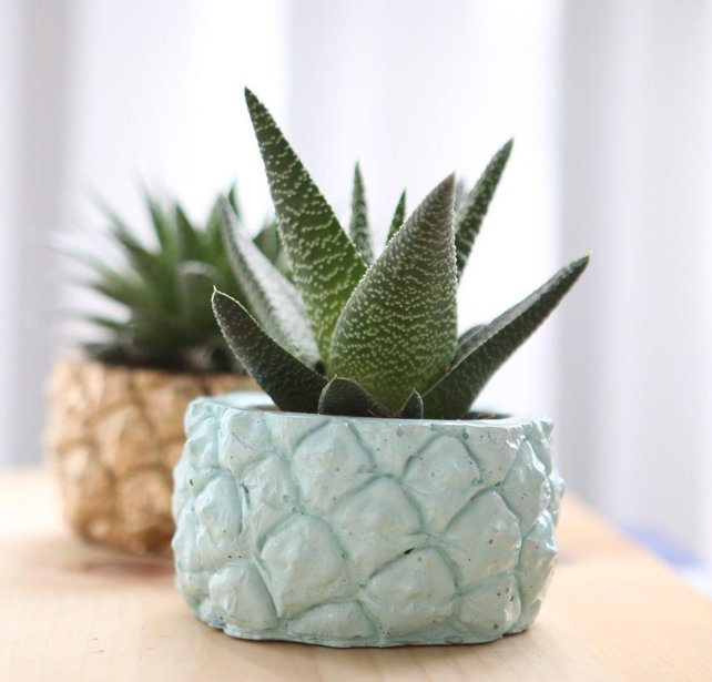 Blue pineapple planter