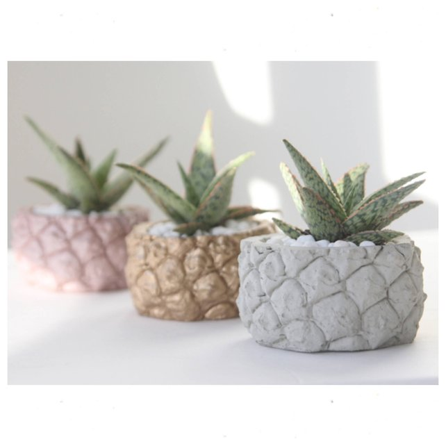Blue pineapple planter by Modern Plant Life