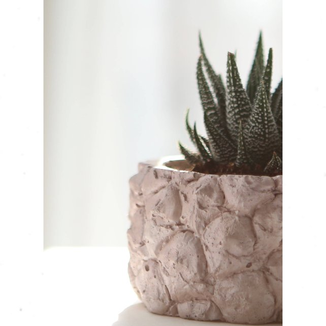 Pink handmade pineapple planter by Modern Plant Life
