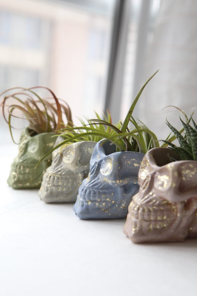 concrete skull planters with gold by Modern Plant Life