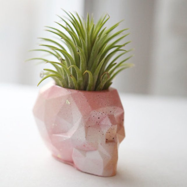 Pink ombre abstract geometric skull concrete air plant holder (small)