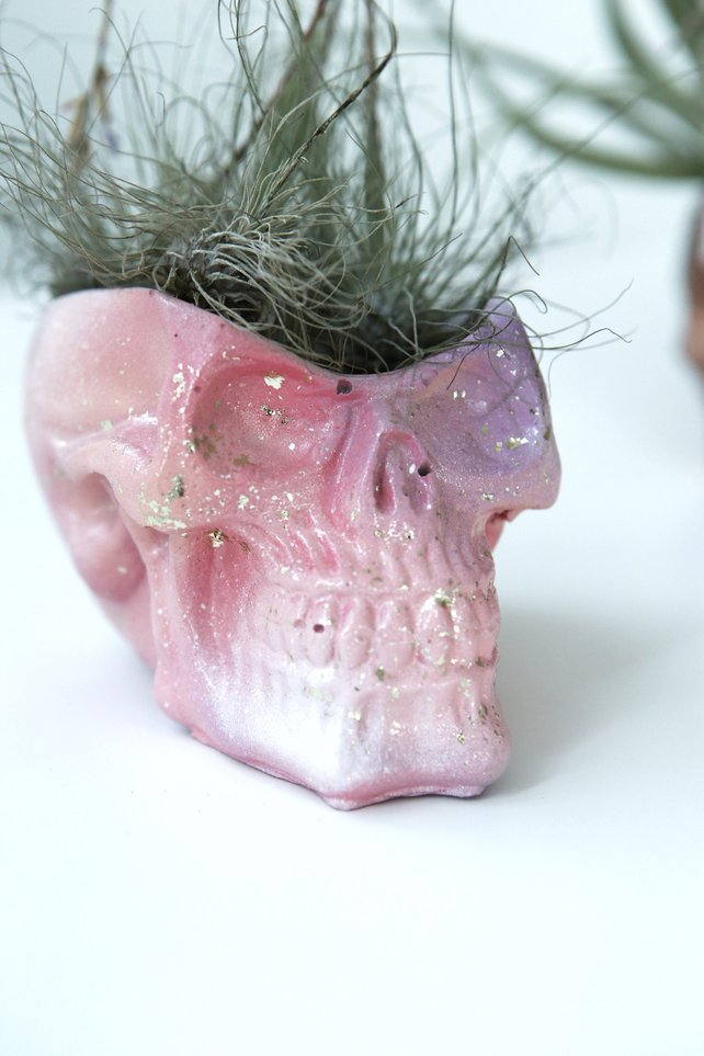 Pink ombre concrete skull planter by Modern Plant Life